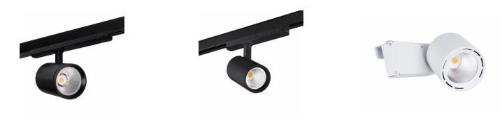 LED immersion spotlight