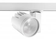 Concord Beacon XL LED II LS3 33W 3312lm 940 15° DALI weiß Leuchte Concord - 1 Stück