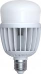 SkyLighting LED Lampe A80 E27 220V 30W 6400K