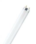Osram L 30 W/840 coolwhite - EEK: A