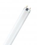 Osram LUMILUX T8, Leuchtstofflampen 26 mm Stabform, mit Sockeln G13